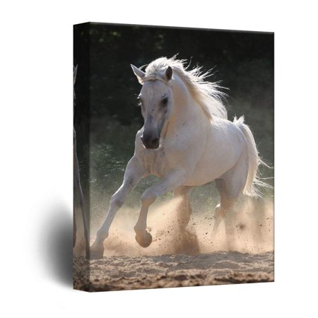wall26 - Canvas Wall Art - Galloping White Horse - Giclee Print Gallery Wrap Modern Home Decor Ready to Hang - 12x18 (Horses Giclee Print)
