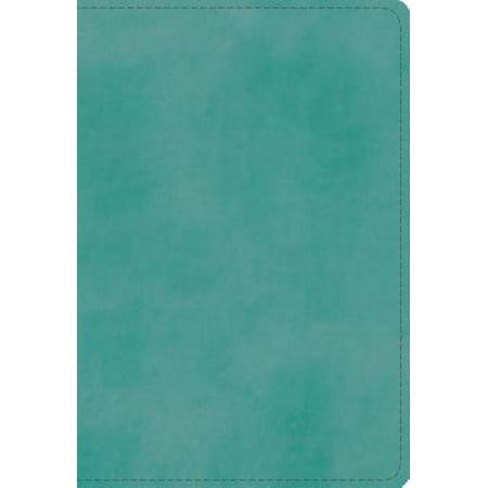 ESV Student Study Bible (Trutone, Turquoise) (Esv Study Bible Vs Macarthur Study Bible)