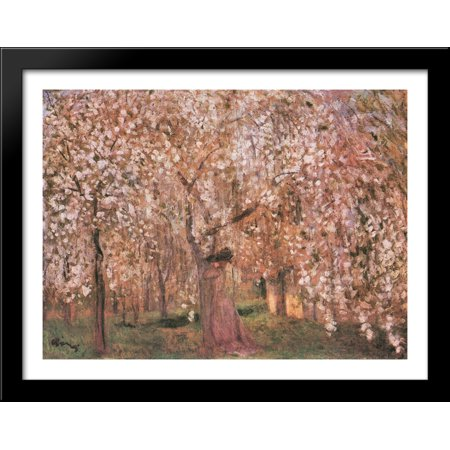Large Cherry (Cherry tree blossoms 36x28 Large Black Wood Framed Print Art by Jozsef)