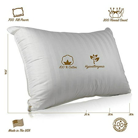 Superior 100% Down 700 Fill Power Hungarian White Goose Down Pillow (Queen)
