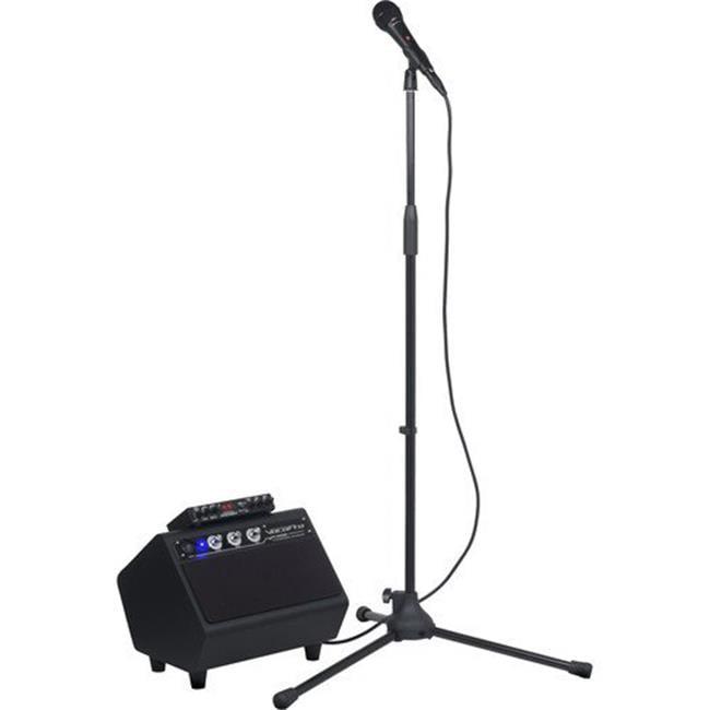 100W Karaoke System