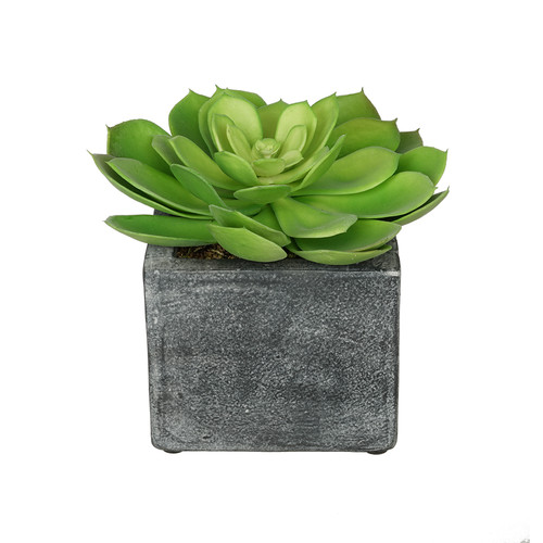 House of Silk Flowers Inc. Artificial Echeveria Plant in Ceramic Cube