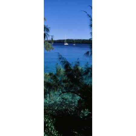 Sailboats In The Ocean Kingdom Of Tonga Vavau Group Of Islands South Pacific Canvas Art   Panoramic Images  36 X 13