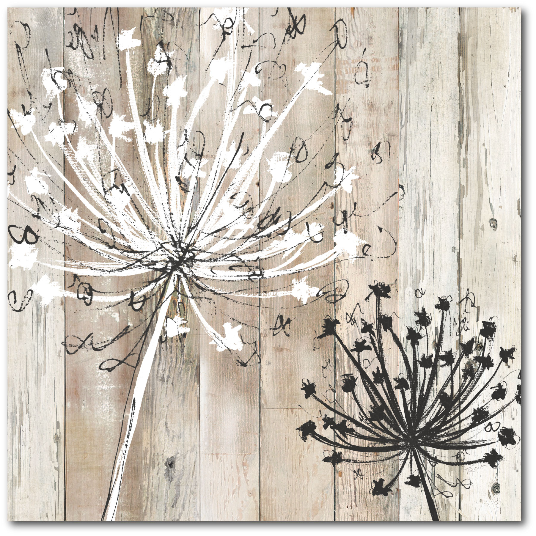 Courtside Market Farmhouse Fluff Gallery-Wrapped Canvas Wall Art, 16x16