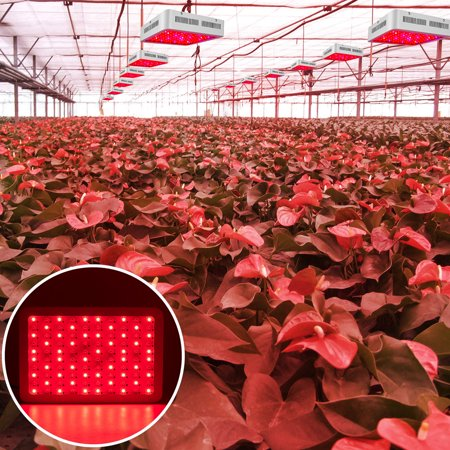 CLEARANCE! 1200W Plant Grow Light LED Bulb, Full Spectrum Panel Grow Lamp with IR & UV LED Grow Lights, for Indoor Plants, Succulents, Seedling, Vegetables, Lettuce, Tomatoes and Herbs,