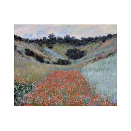 Poppy Field in a Hollow near Giverny by Claude Monet Print Wall Art By Claude