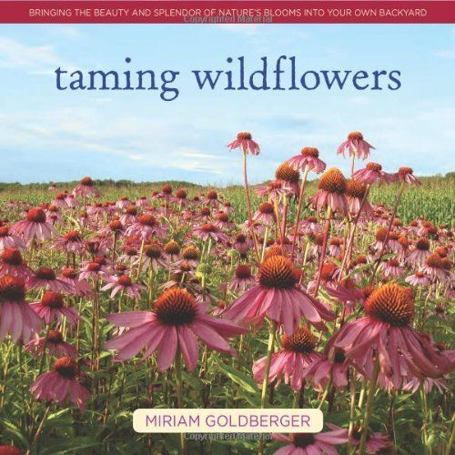 Taming Wildflowers : Bringing the Beauty and Splendor of Nature's Blooms Into Your Own Backyard