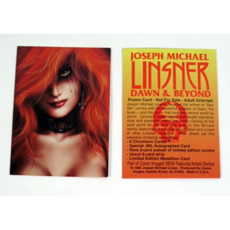 1995 Comic Images Joseph Michael Linsner Dawn and Beyond Promo Card Nm/Mt