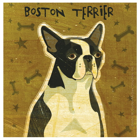 Thirstystone Occasions Drink Coasters, Set, Boston Terrier ()