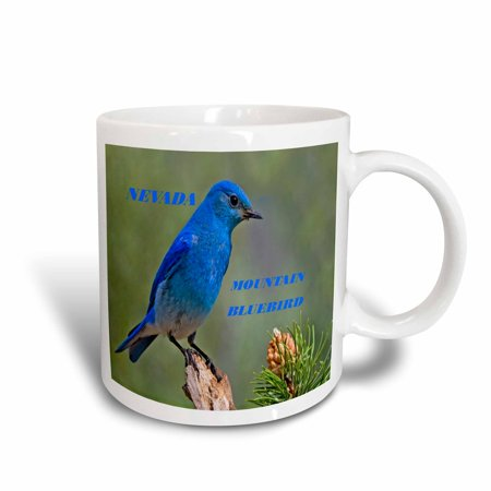 3dRose State Bird Of Nevada Mountain Bluebird, Ceramic Mug, 11-ounce