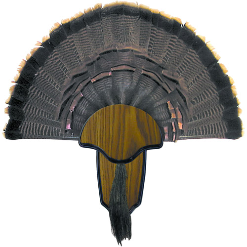 HS Strut Turkey Tail and Beard Mounting Kit