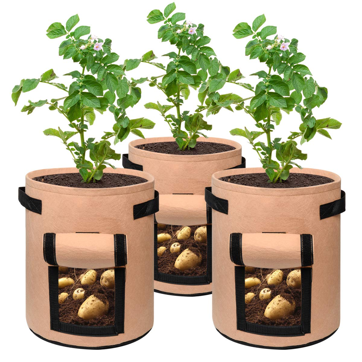 Breathable Garden Vegetable Growing Bags Plant Pots Container for Home Tomato Carrot SUNDEE 3 Pack 7 Gallon Grow Bags with Handle Potato