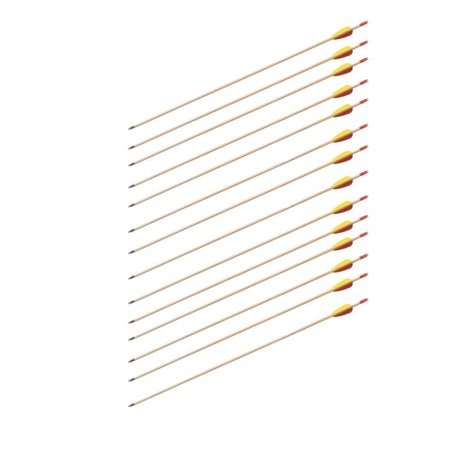"SAS 30"" Wood Traditional Target Practice Arrows with Vanes and Points - 1 Dozen"