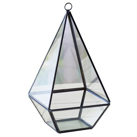 Geometric Glass Teardrop Terrarium with Black Metal Frame Tabletop Display, Open Front for Easy Arrangement](Geo Terrarium)