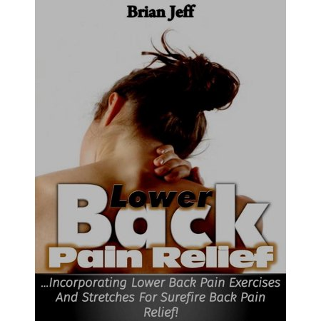 Lower Back Pain Relief: Incorporating Lower Back Pain Exercises and Stretches for Back Pain Relief! -