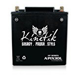 APIX30L YTX30L-BS 12V 30AH Replacement Battery for ETX30L, CYIX30L-BS