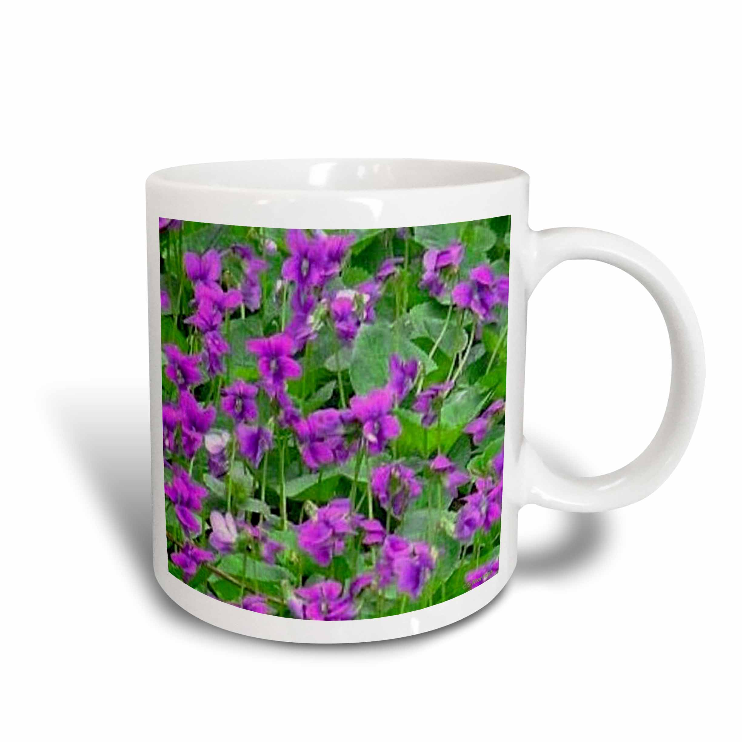 3dRose Wood Violets, Ceramic Mug, 11-ounce