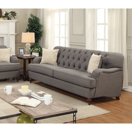 ACME Alianza Sofa with 2 Pillows in Multiple Colors