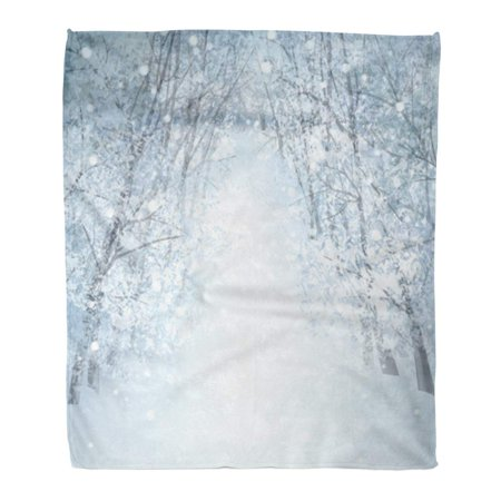 Winter Wonderland Flannels (ASHLEIGH Throw Blanket Warm Cozy Print Flannel Gray Christmas Winter Wonderland Landscape Blue Holiday Comfortable Soft for Bed Sofa and Couch 50x60 Inches )