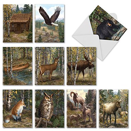 M10032BK INTO THE WOODS' 10 Assorted All Occasions Greeting Cards Feature Woodland Scenary and Animals with Envelopes by The Best Card