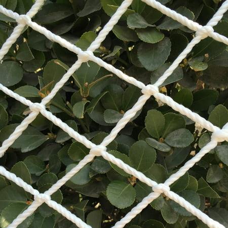 Mr.Garden Trellis Netting, Cucumber Climbing, Tomato Trellis Netting, 5ft x 12ft (1) (Cucumber Ideas)