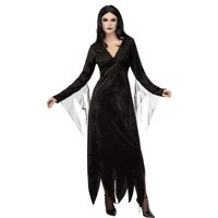 Rubie's Costume Co Addams Family Morticia Addams Costume for Adults, Features Velvety Dress with a Long Hem