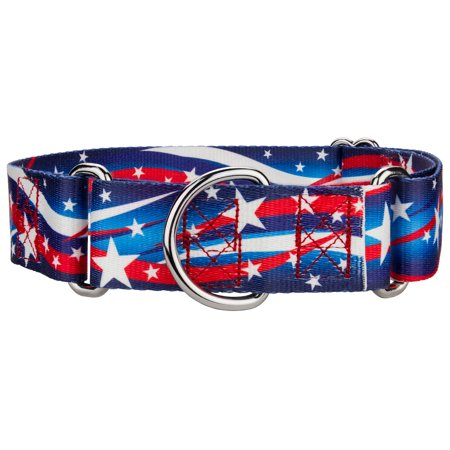 Country Brook Petz™ 1 1/2 Inch Star Spangled Martingale Dog