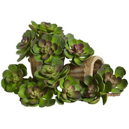 Echeveria Plant - Nearly Natural 5 in. Echeveria Succulent Silk Plant - Set of 12
