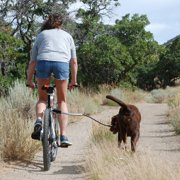 Pet Ego Bicycle Spare Leash Alloy Bar Plus TPR Tube for Cycleash