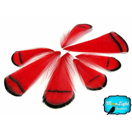 Feather Boas By The Dozen (1 Dozen - Red Lady Amherst Pheasant Tippet)