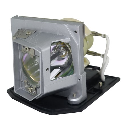 Original Philips Projector Replacement Lamp for Optoma DH1010
