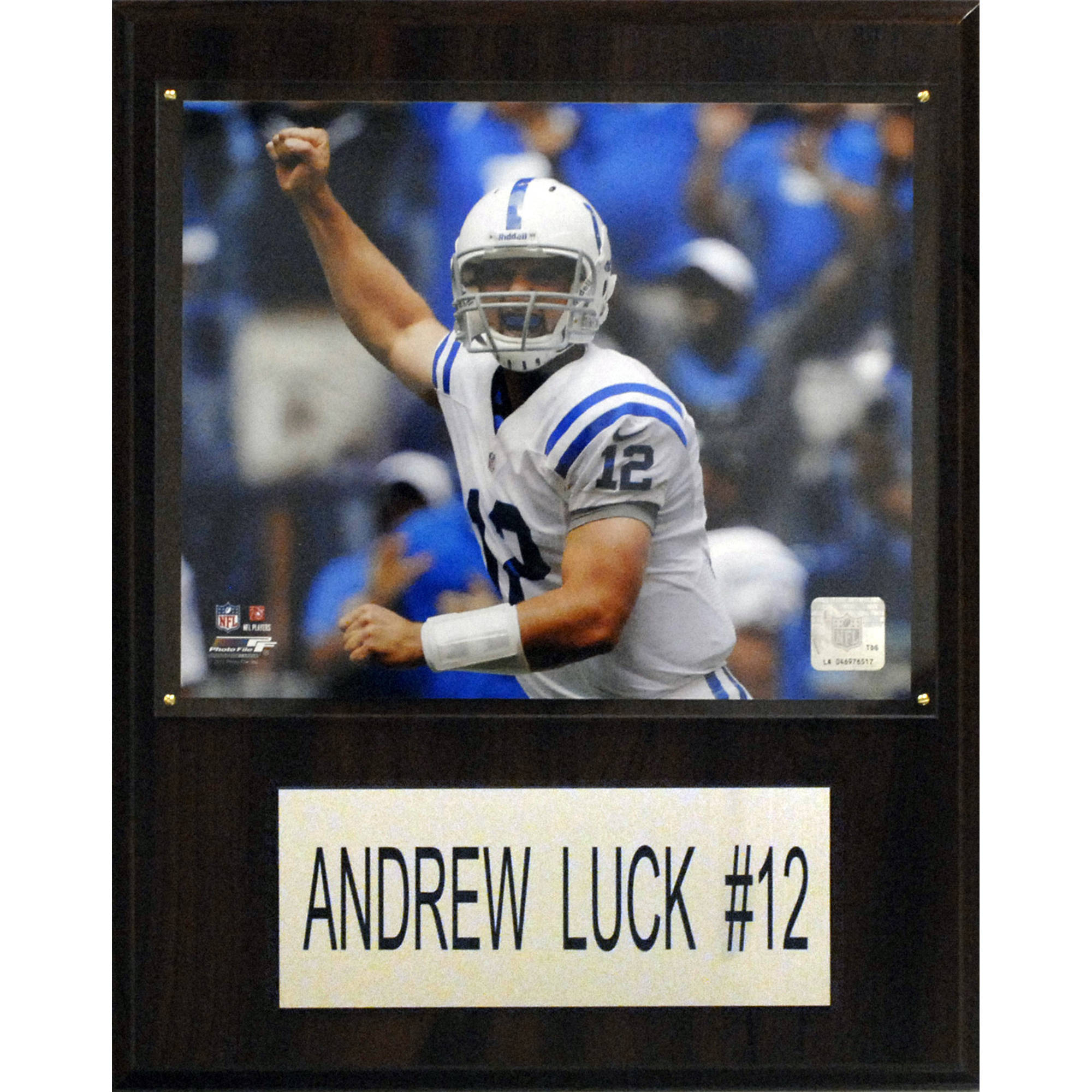 C&I Collectables NFL 12x15 Andrew Luck Indianapolis Colts Player Plaque