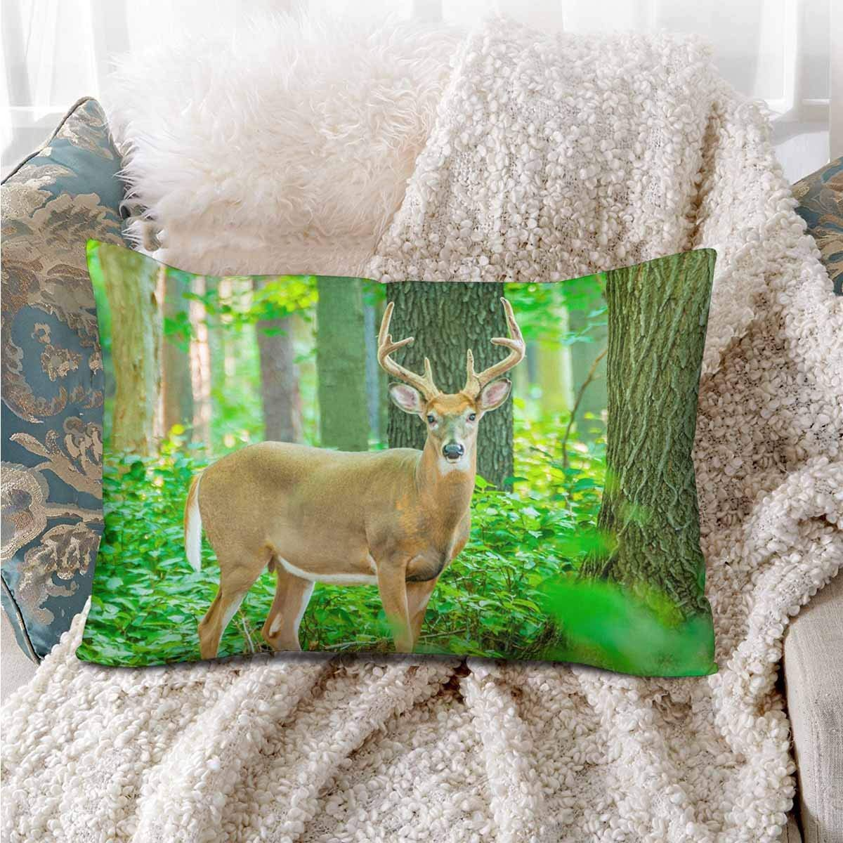 GCKG Whitetail Deer Buck Standing Woods Pillow Cases Pillowcase 20x30 inches - image 3 of 4