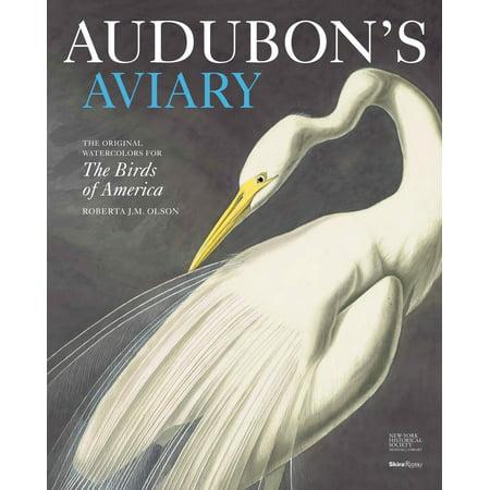 Audubon's Aviary : The Original Watercolors for The Birds of
