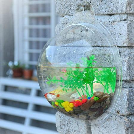 Fish bowl wall mount betta tank aquarium round hanging 1 for Bubbles in betta fish tank