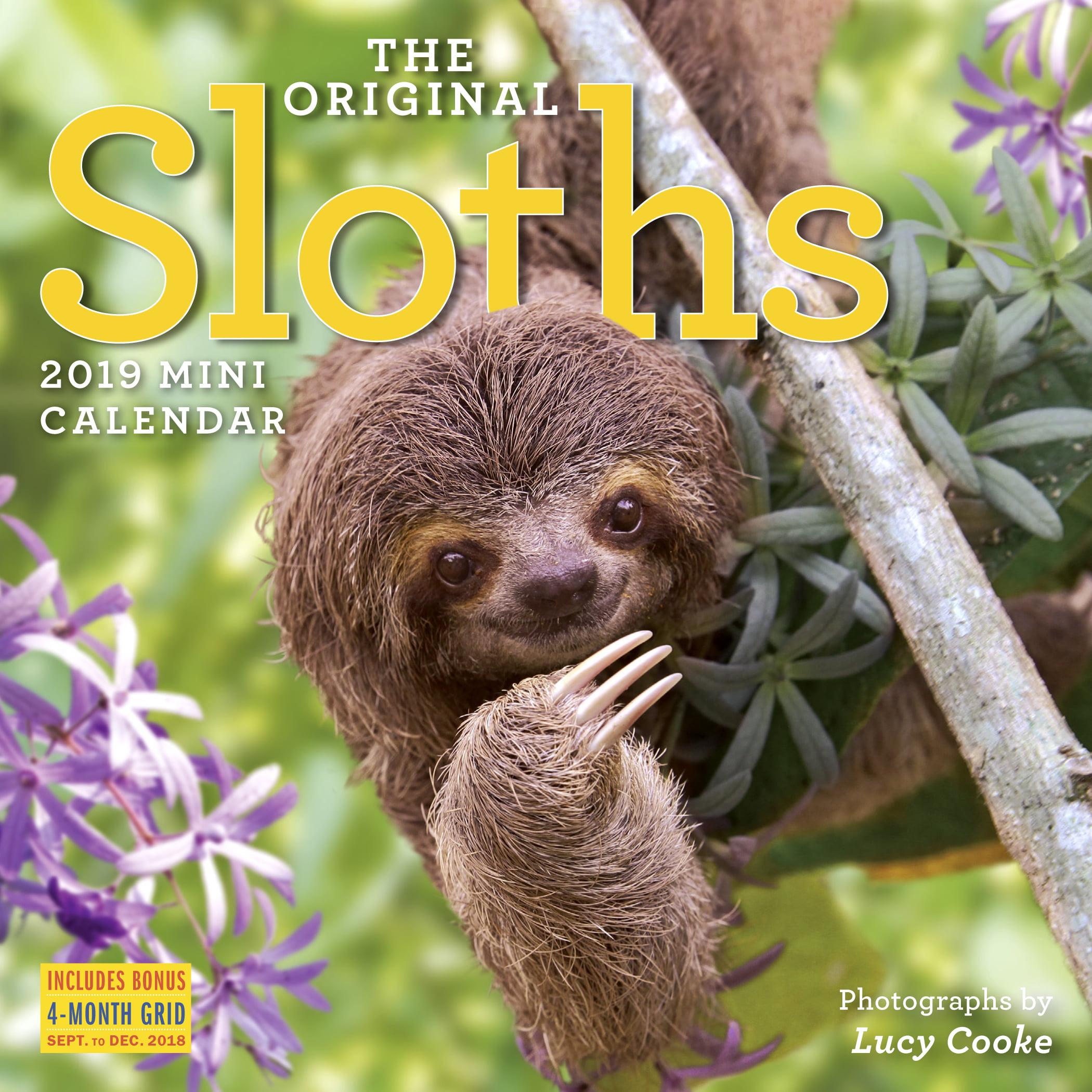 The Original Sloths Mini Wall Calendar 2019