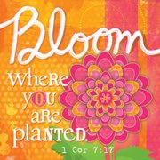 Magnet-Canvas-Inspired Grace-Bloom