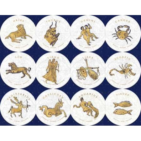 Gilded Zodiac Signs Canvas Art   Sue Schlabach  22 X 28