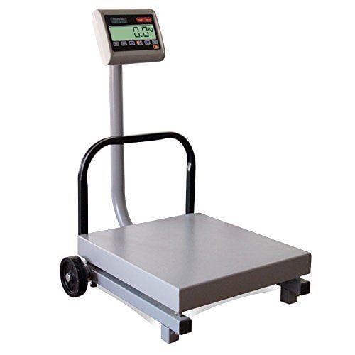 TORREY FS500/1000 Digital Receiving Scale, Rechargeable B...