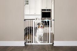 Carlson Extra Wide Walk Through Pet Gate with Small Pet Door 37-Inches Wide  sc 1 st  Walmart & Carlson Extra Wide Walk Through Pet Gate with Small Pet Door 37 ...