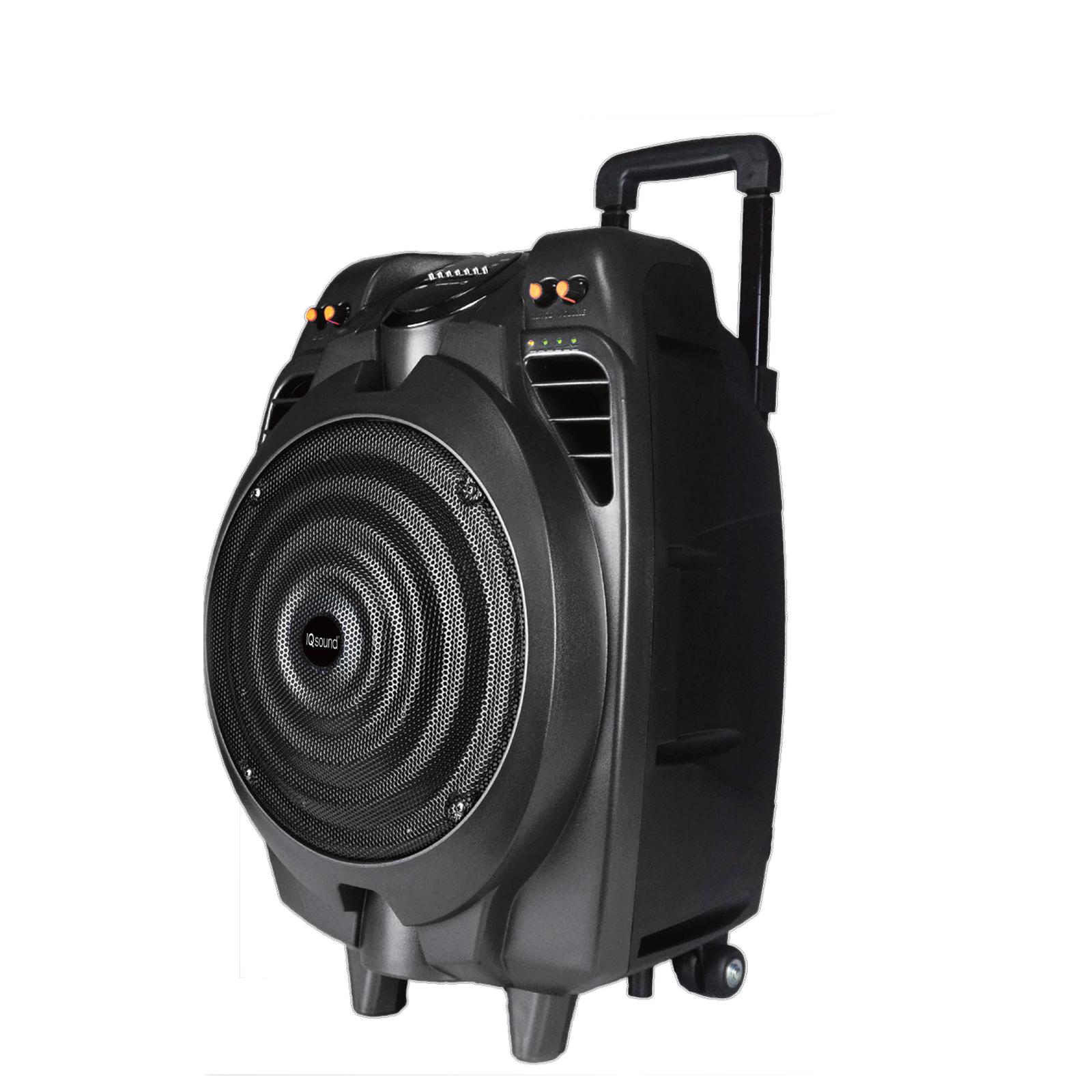 "10"" Rechargeable Bluetooth DJ Speaker"