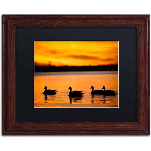 "Trademark Fine Art ""Jamaica Bay Sunset - NYC II"" Canvas Art by David Ayash, Black Matte, Wood Frame"