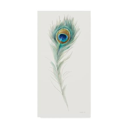 - Trademark Fine Art 'Jaipur IX' Canvas Art by Danhui Nai