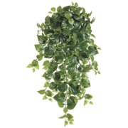 38 Inch Puff Philodendron Hanging Bush x12 with 260 Leaves - Green - Qty of 6