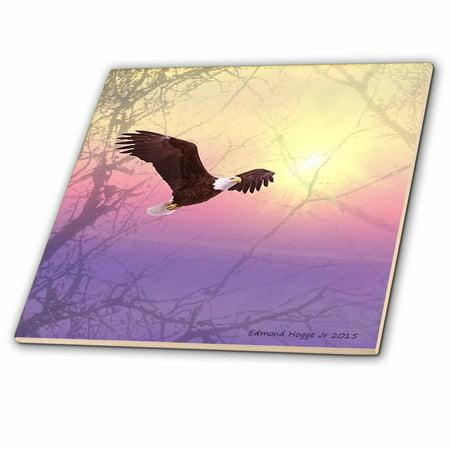 Eagle Tile Box (3dRose Bald Eagle Flying through the Fog - Ceramic Tile, 12-inch )