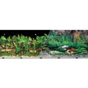 Blue Ribbon Pet Products-Background Double-sided Tropical Freshwater 12in X 50ft