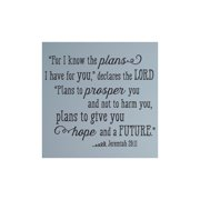 Belvedere Designs LLC I Know the Plans I Have for You Quote Wall Decal (Set of 101)