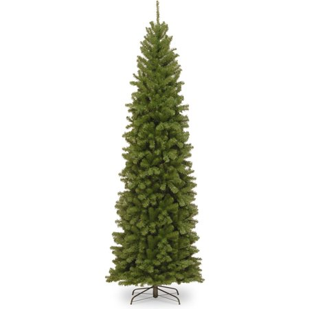 10' North Valley Spruce Pencil Slim Tree