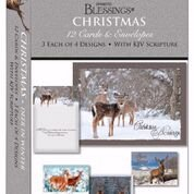 Card-Boxed-Shared Blessings-Christmas-Deer In Winter (Box Of 12)