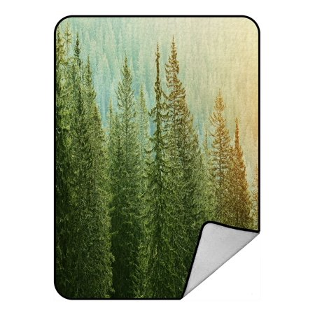 PHFZK Landscape Blanket, Green Trees in a Forest at Sunset Fleece Blanket Crystal Velvet Front and Lambswool Sherpa Fleece Back Throw Blanket 58x80inches